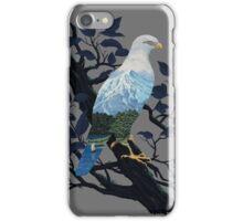 Eaglescape iPhone Case/Skin