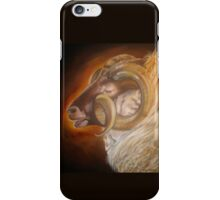 Reese, Shetland Sheep iPhone Case/Skin