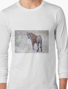 Young Male Tiger on The Prowl Long Sleeve T-Shirt