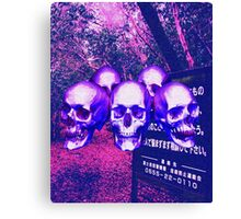 Aokigahara Forest Canvas Print