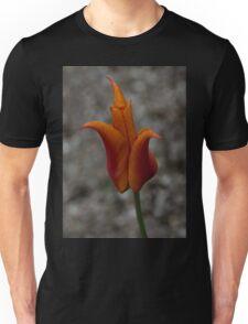 A Flamboyant Flame Tulip in a Pebble Garden Unisex T-Shirt
