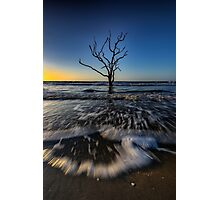Morning at Botany Bay Plantation Photographic Print