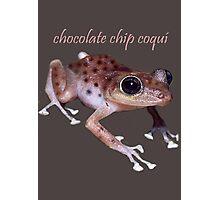 Chocolate Chip Coquí Photographic Print