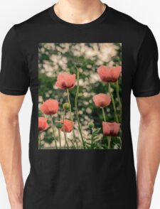 Pink Poppy in late everning light Unisex T-Shirt