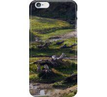 Creek iPhone Case/Skin
