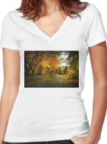 Going Home to the Hills and Valleys Women's Fitted V-Neck T-Shirt