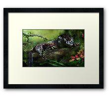 Wild Eyes - Panther Framed Print