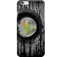 Seeking Reprieve Beyond the Cobwebs iPhone Case/Skin
