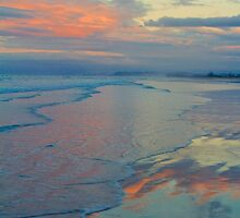 Pastel Beaches by Barbara  Brown