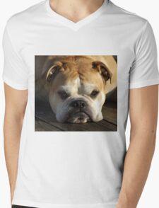 bulldog your best friend Mens V-Neck T-Shirt