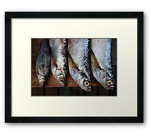 huge eyes sabrefish Framed Print