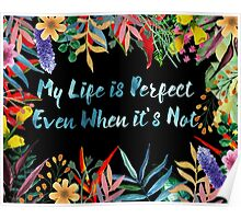 My Life is Perfect Even When It's Not Poster