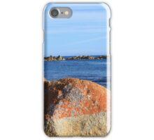 Lichen on Rock - Bay of Fires, Tasmania - 2013 iPhone Case/Skin
