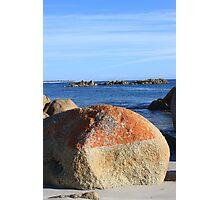 Lichen on Rock - Bay of Fires, Tasmania - 2013 Photographic Print