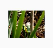 A coots nest with eggs ! Unisex T-Shirt