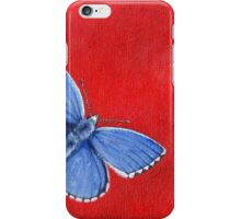 Butterfly - Adonis Blue  iPhone Case/Skin