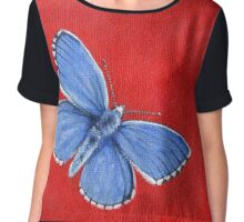Butterfly - Adonis Blue  Chiffon Top