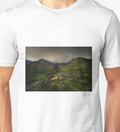 Haystacks and Fleetwith Pike Unisex T-Shirt