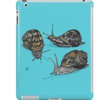 Slow Trails iPad Case/Skin