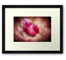 Flowering Almond bush pink 7 Framed Print