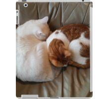Sleeping Peacefully   iPad Case/Skin