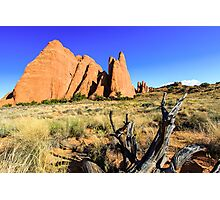 Arches National Park Photographic Print