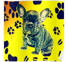 Frenchie Paw Print Poster