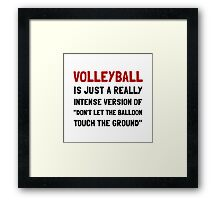 Volleyball Balloon Framed Print