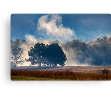 Cades Cove In The Mist Canvas Print