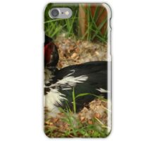 Black and White Duck on a Nest iPhone Case/Skin