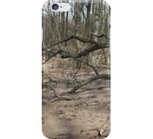 bare  trees on the flooded banks of the river iPhone Case/Skin