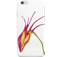 Aquilegia-watercolor flower for elves iPhone Case/Skin