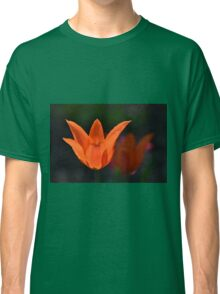 Backlit Orange Tulip Classic T-Shirt