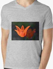 Backlit Orange Tulip Mens V-Neck T-Shirt