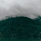 Pacific Northwest Lake by Leah Flores