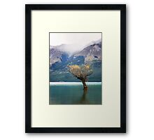 The Lone Willow - Glenorchy New Zealand Framed Print