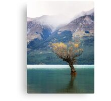 The Lone Willow - Glenorchy New Zealand Canvas Print