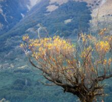 The Lone Willow - Glenorchy New Zealand Sticker