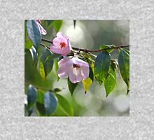 Early Spring Pale Pink Camelias...Abbotsbury.Dorset. UK Womens Fitted T-Shirt