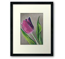 Spring blooming tulip flower original oil pastel painting Framed Print