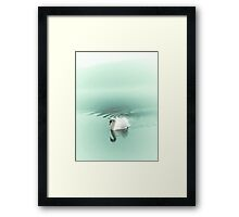 Blue Swan Framed Print