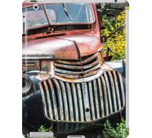 "Jerome, Arizona - ""Tuxedo"" iPad Case/Skin"