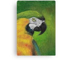 green and gold parrot macaw original oil pastel painting Canvas Print