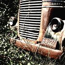 Rust in Peace by Candy Gemmill