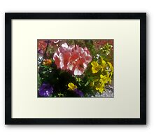 Shadow Clan Mother's Day Bouquet Framed Print