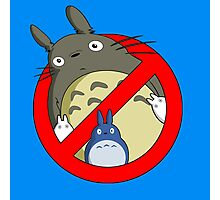 Totoro-busters Photographic Print