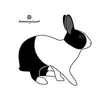 Dutch Rabbit, Britannia Petite Photographic Print