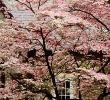 Blossoming Sticker