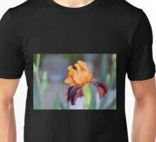 Orange and Mahogany Iris Unisex T-Shirt