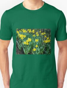 Daffodils Growing In The Woods Unisex T-Shirt